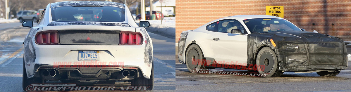 2015 Mustang GT350 Videos & Pictures - 2015 Mustang GT350 Picture
